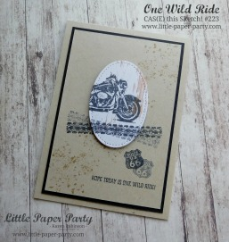 Little paper Party, One Wild Ride, CTS#223