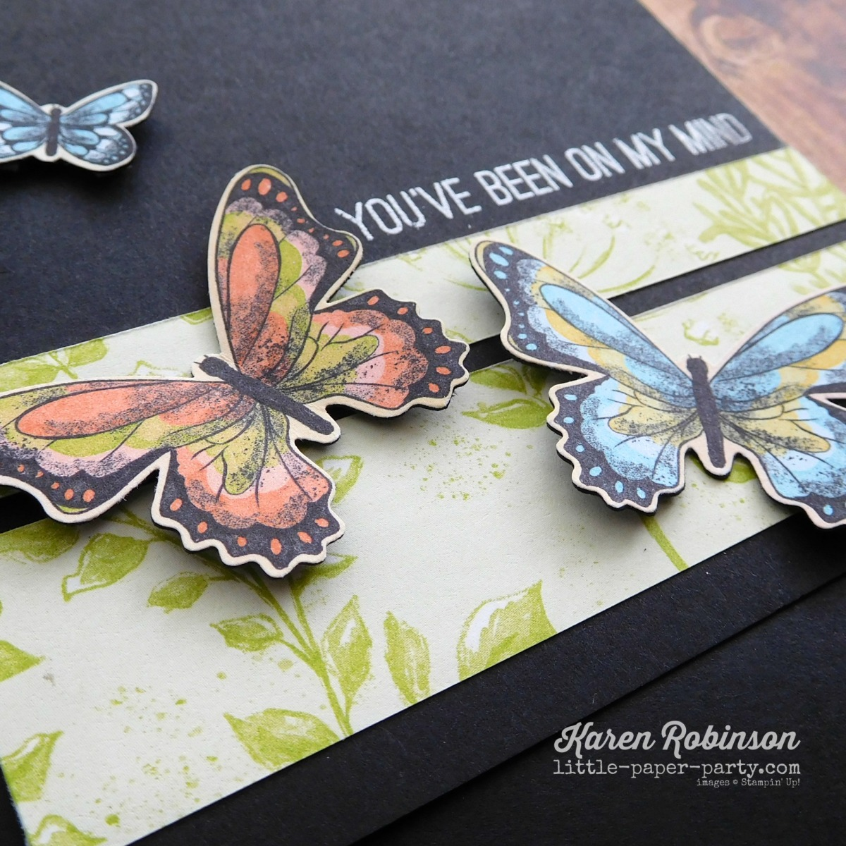 In the Spotlight - Botanical Butterfly DSP
